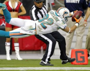 Dolphins_Hartline_2012