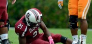 South_Carolina_Cocks_Marcus_Lattimore_2012