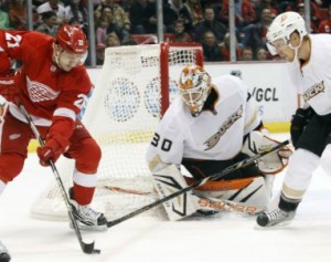 Red wings_Ducks_2013