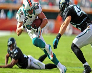 Dolphins_Brian_Hartline_2012