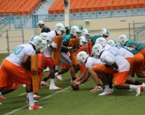 Miami_Dolphins_Practice_2013