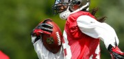 Bucs_Dashon_Goldson_2013
