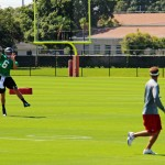 Vincent_Jackson_Mike_Williams_Bucs_Mini-Camp_2013