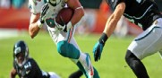Dolphins_Brian_Hartline_2013