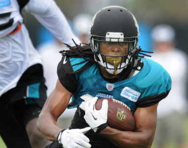 Jaguars Cecil Shorts III 2013 Top 5 Wide receivers most likely to get injured in 2014