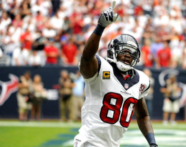 Texans_Andre_Johnson_2013