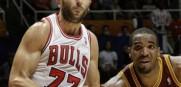 Bulls_Radmanovic_2013