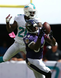 Dolphins_Reshad_Jones_2013