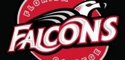 Florida Falcons Logo