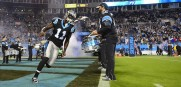 Panthers_Brandon_LaFell_2013