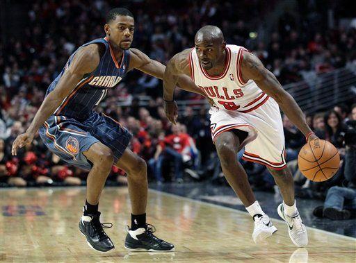 Bulls_Mike_James_2013