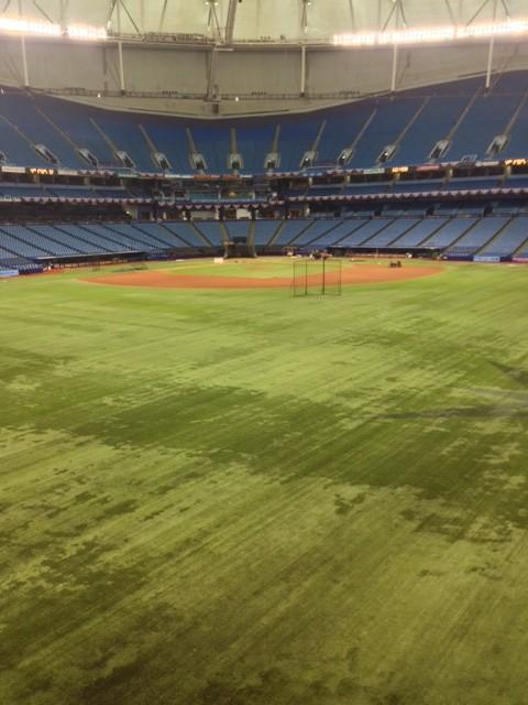 Center_Field