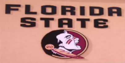 Seminole Head Logo