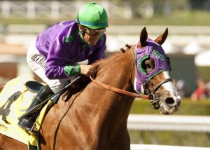 California Chrome hopes to take home the Triple Crown with a win at the Belmont Stakes today.