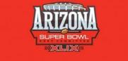 Super-Bowl-XLIX-Logo