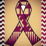 FSU Players to Sport Ribbons During Game For Shooting Victims