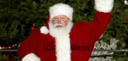 LeBron James Santa