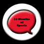 12 Months of Sports – A Year in Review