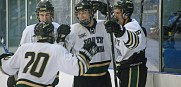 USF has a hockey team that is making waves in the state of Florida.  (Photo Karen Martin)