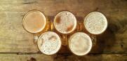 Craft Beer Expert