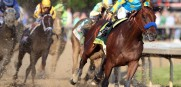 American Pharaoh is not done racing just yet