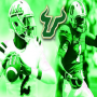 USF Football Officially Adds Two Transfers
